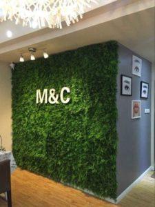 Tường cây nhựa tại quận 7 – phong cách mới sành điệu cho không gian nội thất.