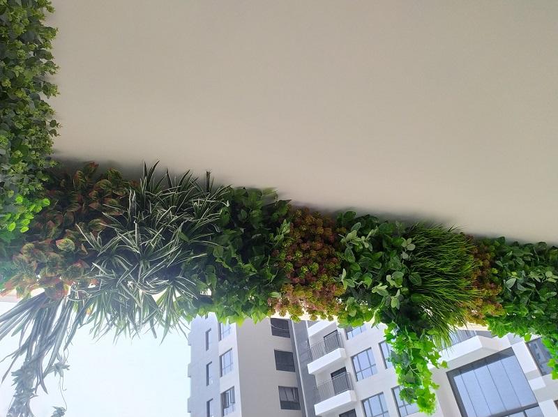 Mẫu tường cỏ ở trên cao cực sang trọng, thoáng mát